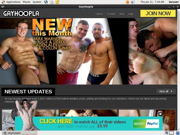 [Image: Gay-Hoopla-Mit-Sofort.jpg]