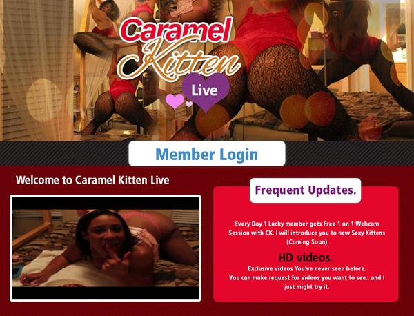 Try Caramel Kitten Live Discount