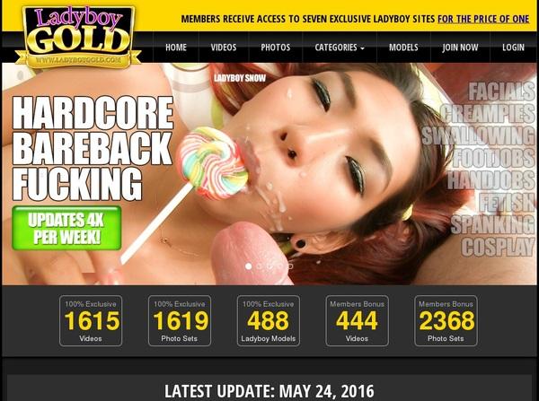Ladyboygold.com Promo Codes
